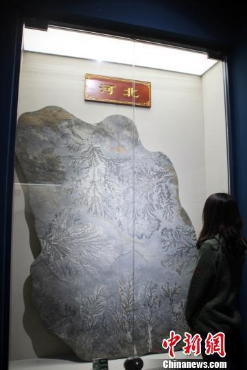 1300多方珍贵奇石在万博体育软件下载链接易县展出引关注(图)