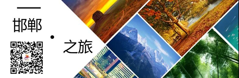 魏县热带植物园梦幻时空节盛大开启